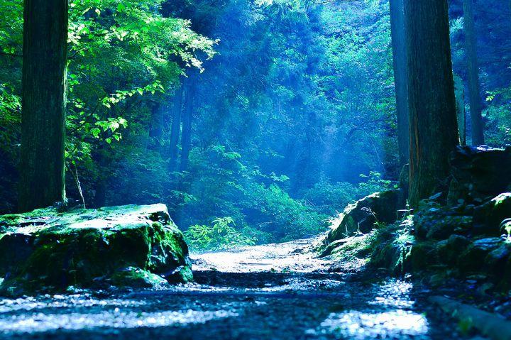 東京にも絶景スポットが?ため息をつくほど美しい東京都内の絶景スポット7選
