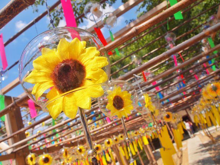 夏の風物詩!見ているだけで涼しい日本全国の''風鈴イベント'' 10選