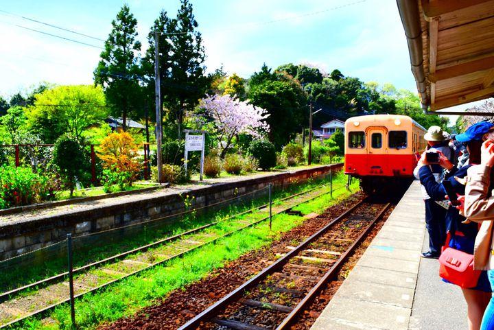 人生で一度は見に行きたい!東日本の鉄道沿線で見れる7つの絶景