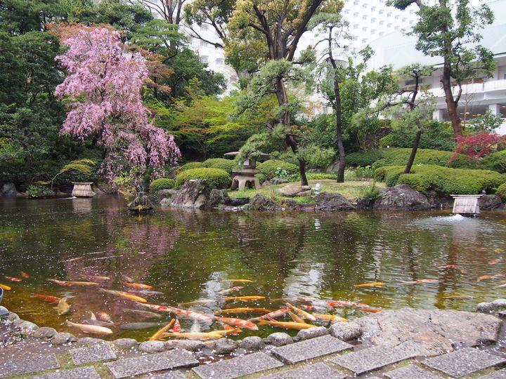 美しい庭園は必見!優雅な時間を満喫できる、東京港区の「八芳園」