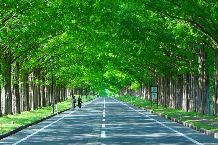 夏だからこその絶景を今年の夏休みで!近畿地方の夏の絶景12選をご紹介