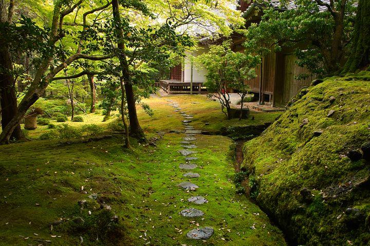 苔で覆われた神秘的な緑の世界。京都「西芳寺」の知られざる魅力に迫る