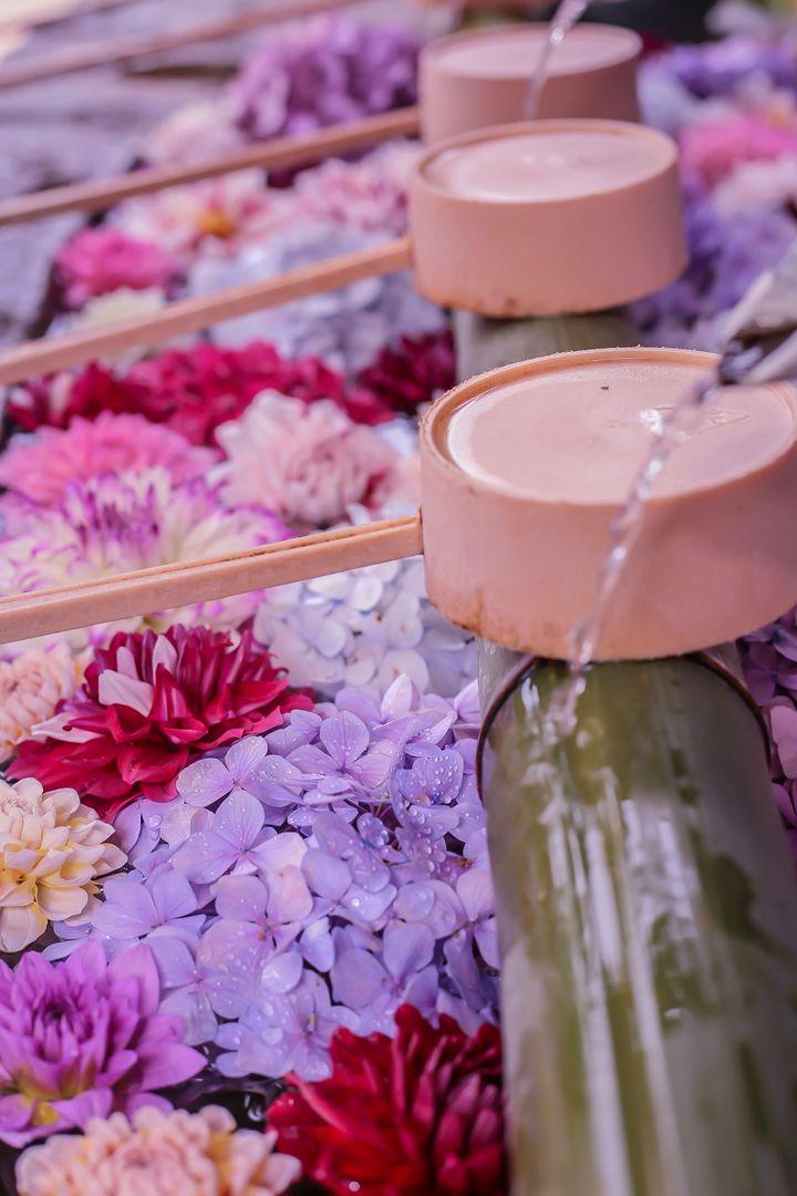 インスタで人気な花手水(はなちょうず)って知ってる?全国にある花手水7選