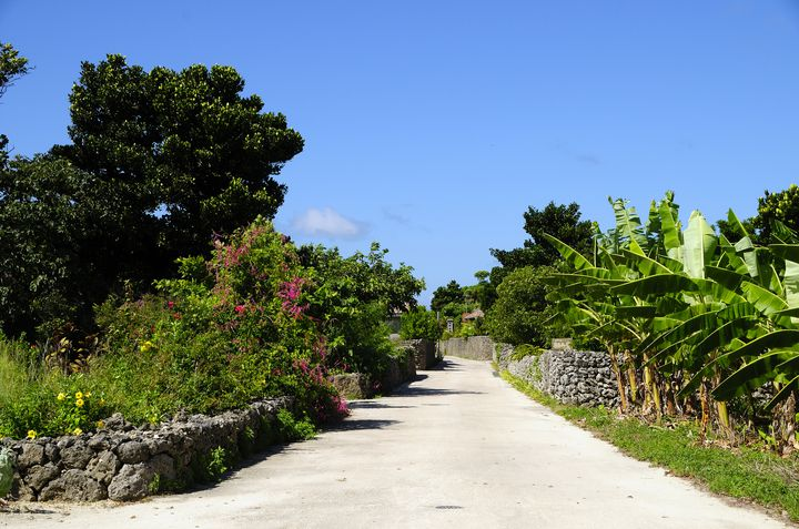 爽やかな風を感じに行こう!レンタサイクルで周りたい日本の島12選