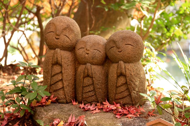 紅葉を見に行こうよう。東京近郊のスベっても優しい癒やしの紅葉スポット7選
