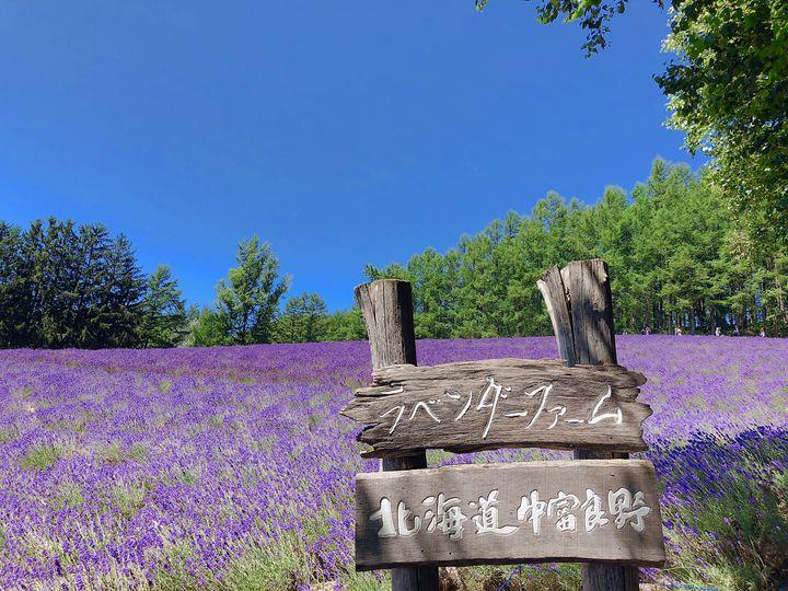 """涼しく可愛く""""夏旅""""したい!「夏の北海道」で行きたい厳選スポット12選"""