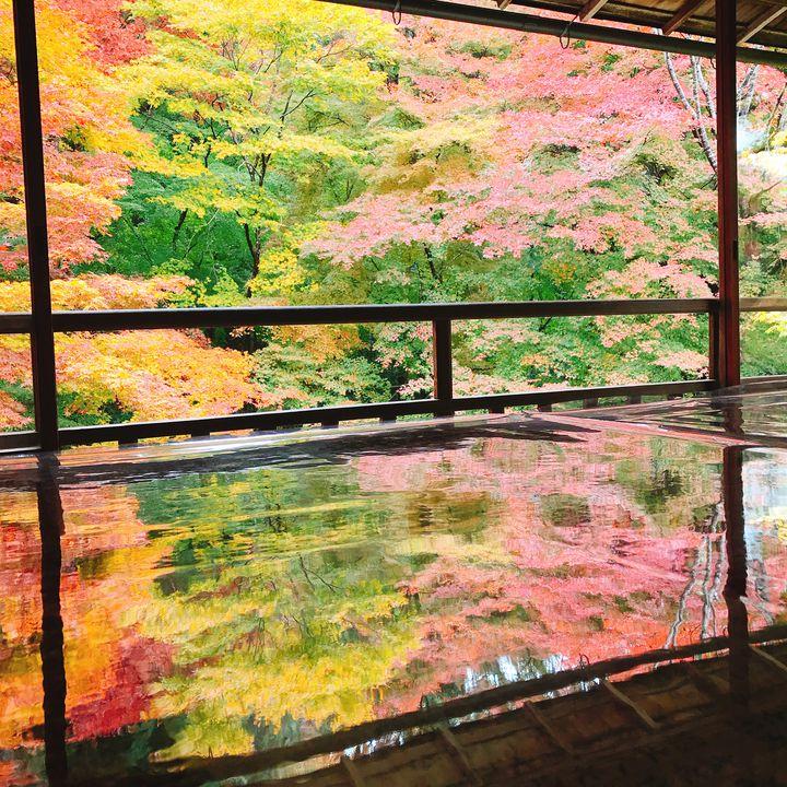 """今がイチバン楽しめる。""""秋の京都でしたいこと""""5つ&おすすめスポット10選"""