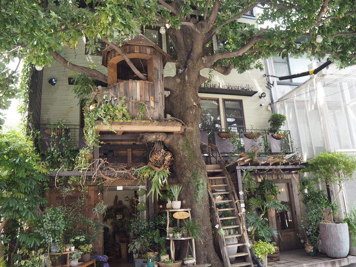休日は未開拓の地を巡る街歩き。東京都内の今気になる街&グルメ総まとめ