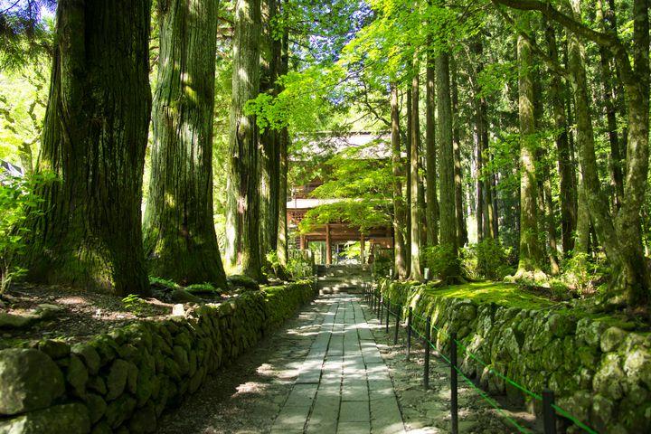"""自分を一度リセットする旅。週末旅行で行きたい長野県の""""心の充電スポット""""10選"""