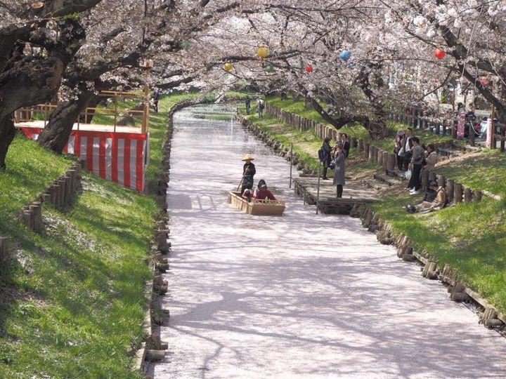 """春の絶景を満喫しよう!関東地方の""""今週したいこと""""7選"""