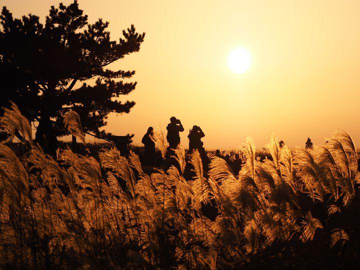 """あなたの""""失恋した心""""を癒す。「傷心旅行」で訪れたい日本全国の絶景12選"""