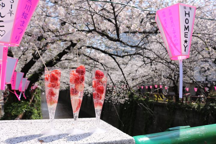 """本格的に春がやってくる!東京近郊の""""3月に行きたいイベント""""まとめ"""