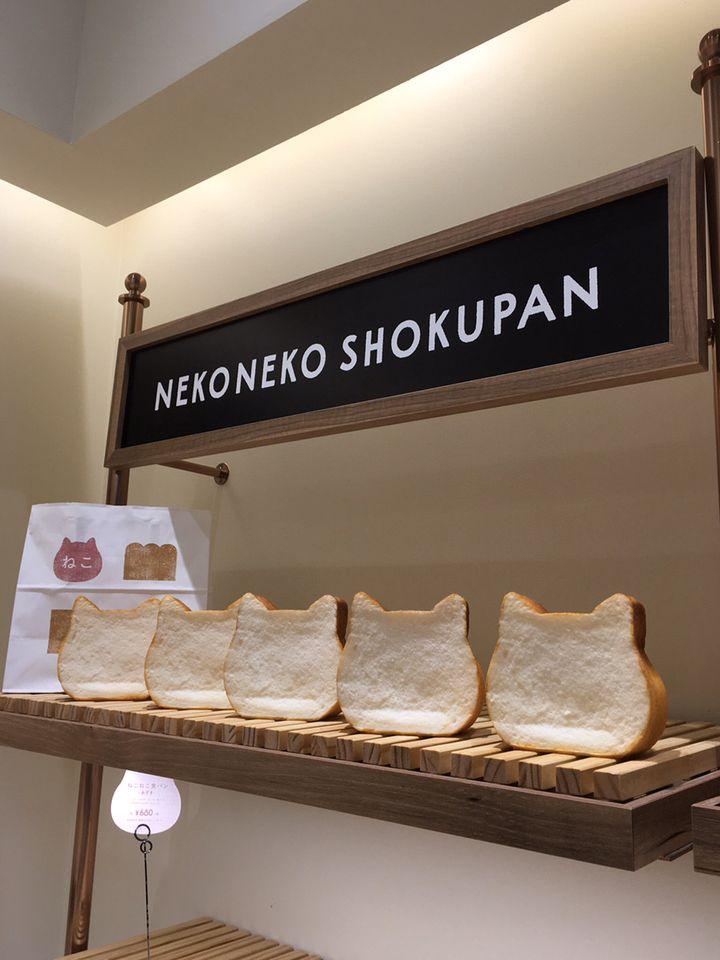 【終了】SNS映えで話題の「ねこねこ食パン」が博多マルイに期間限定オープン
