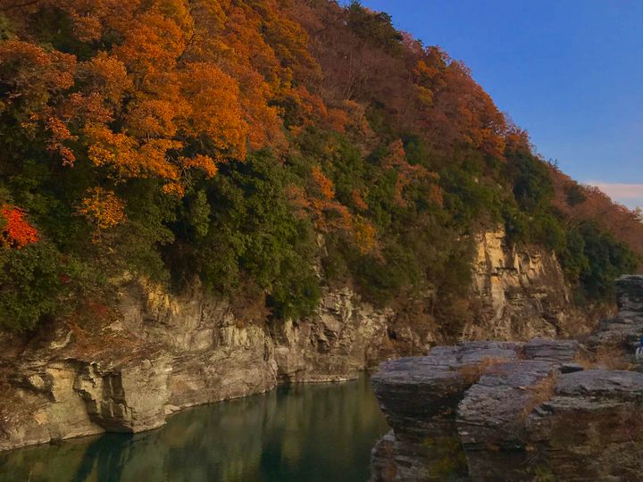 流れる車窓から秋の絶景を満喫しよう。この秋乗りたい関東の絶景鉄道7選