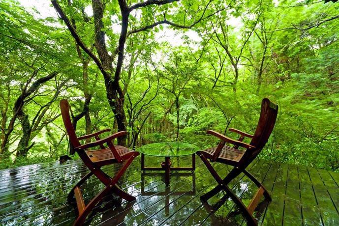 大自然の緑に癒される!本当は秘密にしておきたい「森の中にある旅館」5選