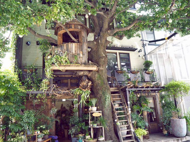 """ゆったり癒しのカフェタイムを!東京都内の素敵な""""一軒家カフェ""""10選"""