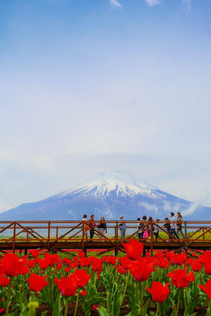 一日中楽しめる!富士山付近の立ち寄るべき人気観光スポット15選