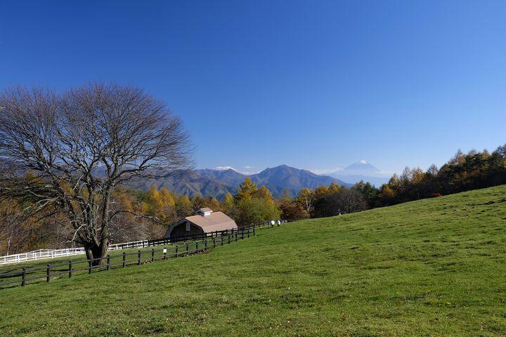 清里高原周辺の観光地15選!山梨で夏も冬も自然を堪能しよう