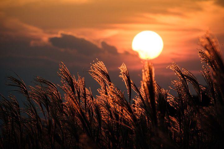 夕焼けに染まる思い出を。秋の夕暮れ時に訪れたい全国の絶景スポットまとめ