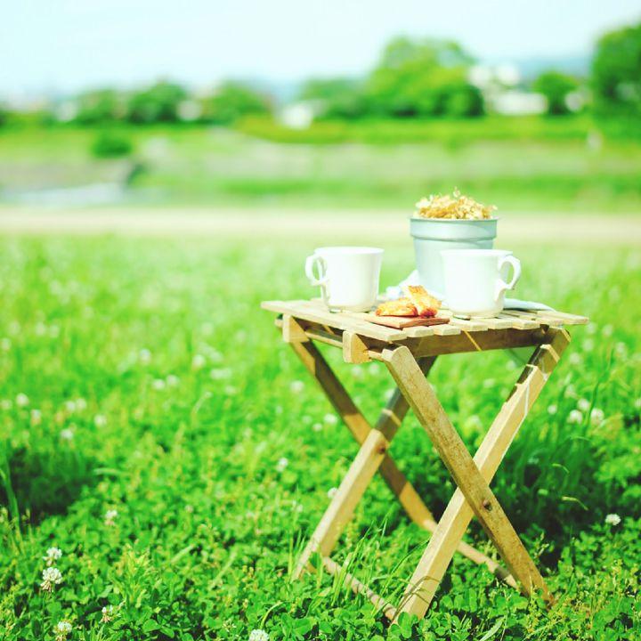 春夏の要注目スポット!京都でピクニックができる自家焙煎珈琲専門店が気になる