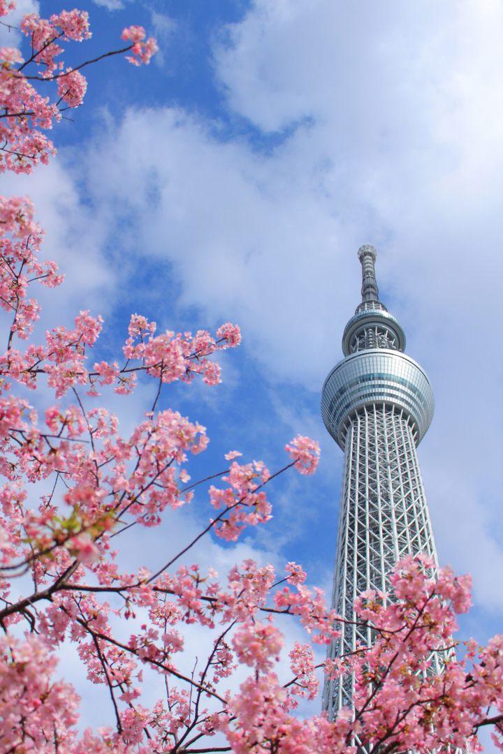 エリア別!東京観光のおすすめスポット70選 完全まとめ