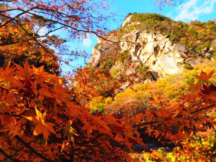 山梨が誇る紅葉の名所を堪能。今年の秋は「昇仙峡」の紅葉を見に出かけよう