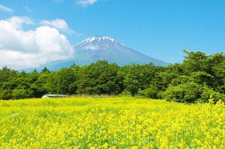 """あなたもきっと見に行ける!東京発のドライブで""""日本の絶景""""12個を見に行こう"""