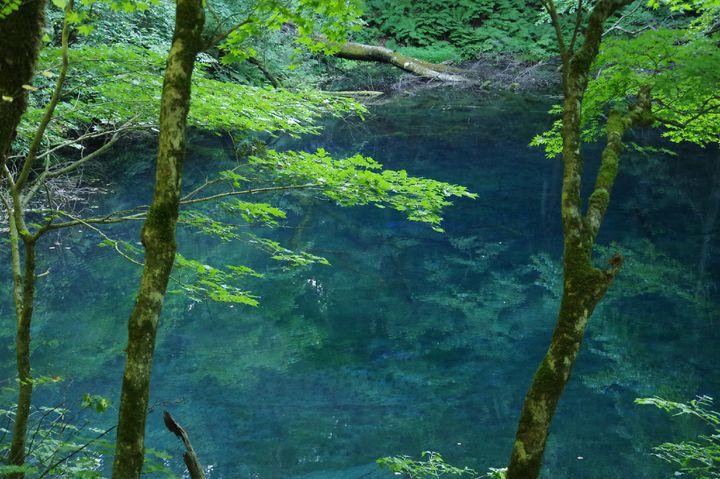 """今年の梅雨が待ちきれない!雨の日だから美しい日本の""""深緑の絶景""""10選"""