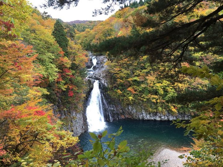 アジサイに浸り、峠の茶屋でおでんを。「#秋田ドライブ」で行く7つの魅力スポット
