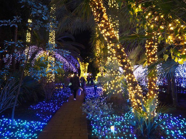 今年は和風クリスマスにしない?鎌倉のおすすめデートスポット7選