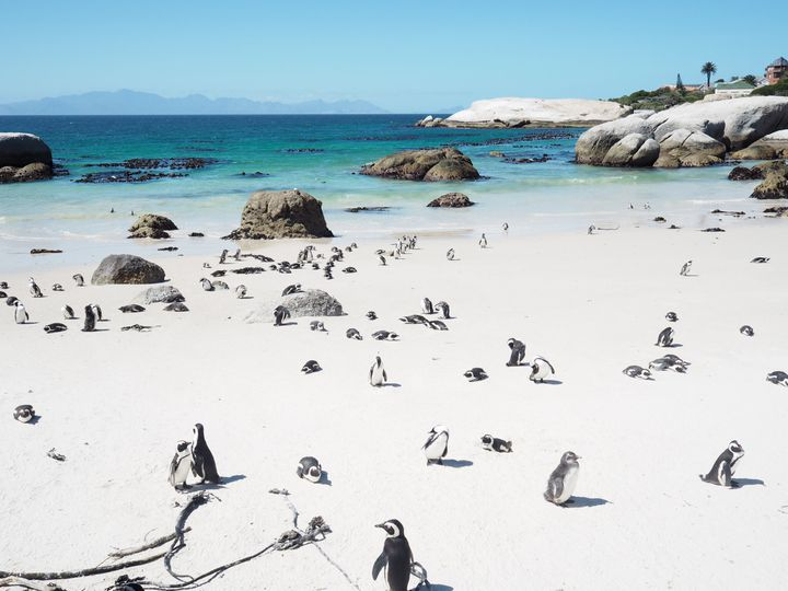 大自然を味わう非日常旅。アフリカで必ず訪れたい7つの観光スポット