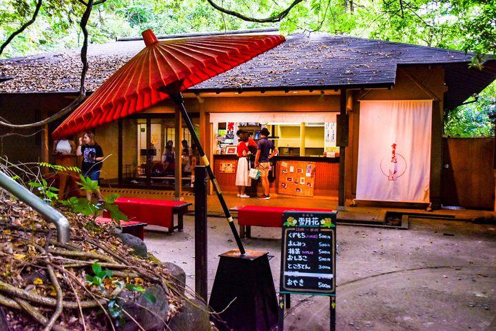 週末tripにおすすめ!関東近郊のいつもと一味違うおでかけスポット7選