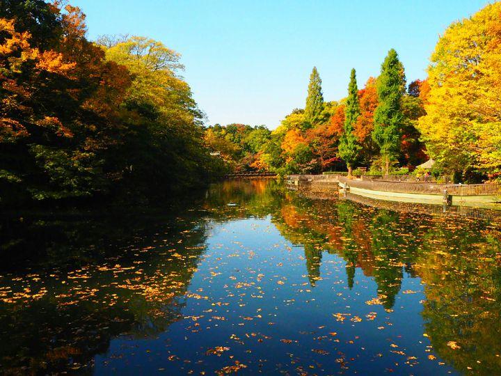 吉祥寺でのんびりしよう。住みたい街・吉祥寺で過ごす秋の1日デートプラン