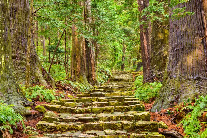 和歌山県の世界遺産『熊野古道』と『高野山』の魅力&楽しみ4選