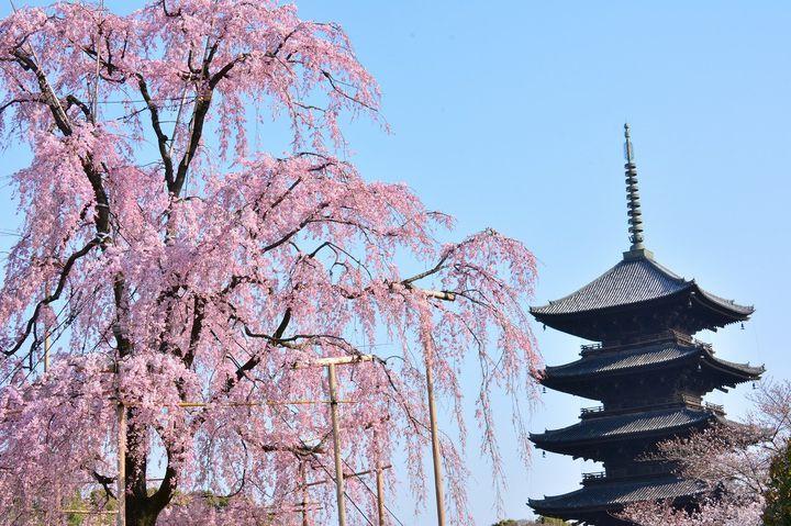 """忙しいけど、京都行こう。""""和""""を満喫する京都日帰りプランはこれだ"""