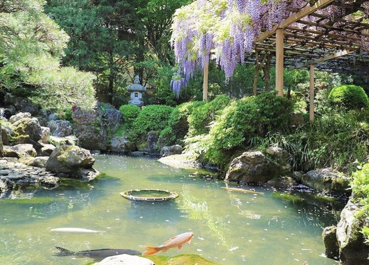一年の計は元旦にあり!宮城県で初詣へ行くのにおすすめの神社&寺7選