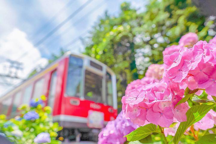 次なるトレンドは電車旅!女子旅にもぴったりなフォトジェで可愛い電車10選