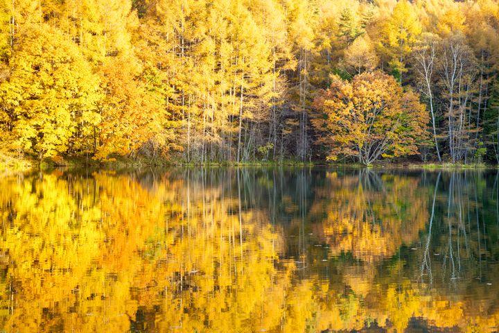 長野県は絶景の宝庫だった。東京都内から行ける長野県の絶景スポット8選