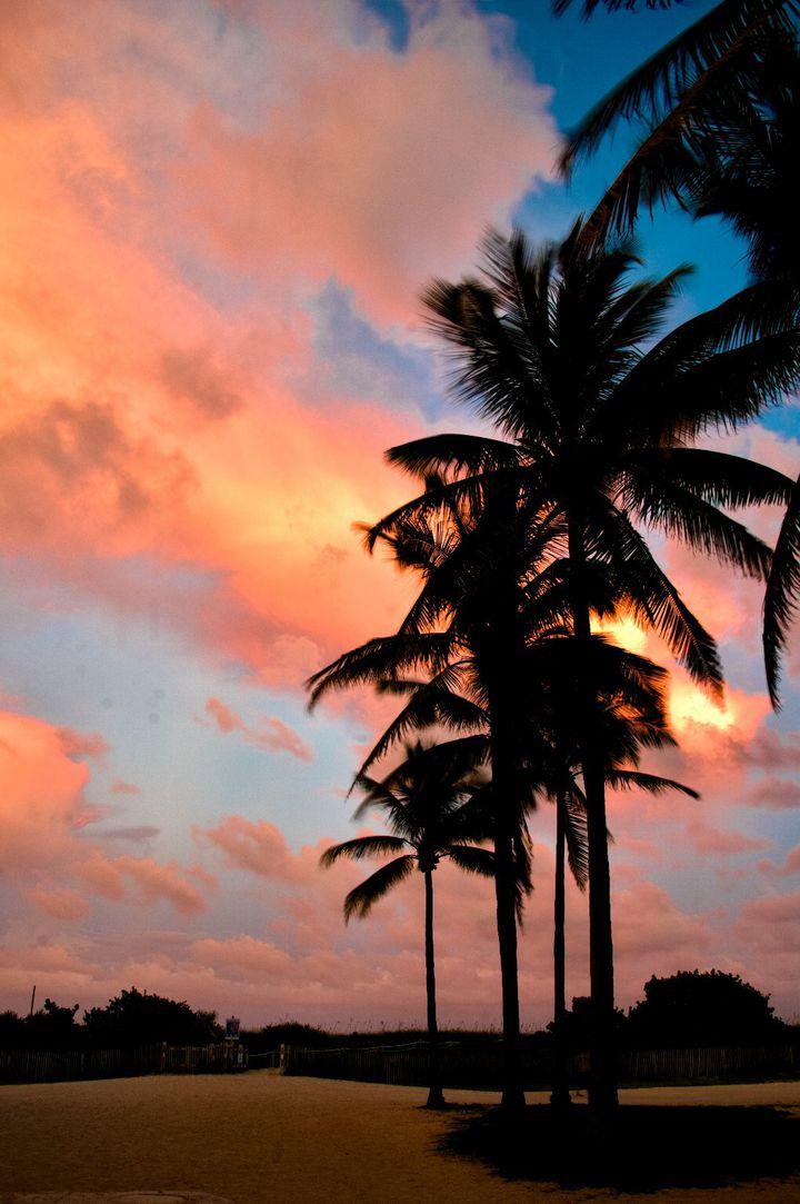 憧れのフロリダ(アメリカ)を遊びつくそう!おすすめの観光スポット7選