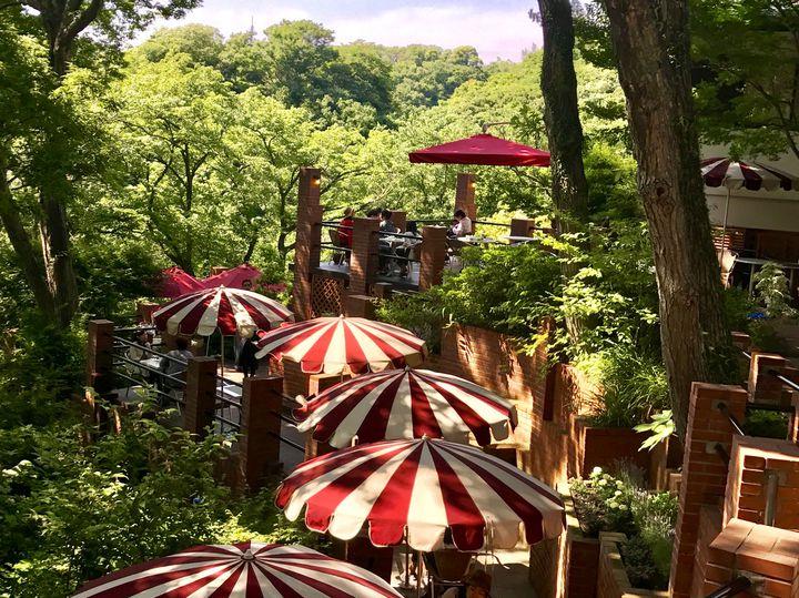 鎌倉に広がるジブリの世界。天空カフェ「樹ガーデン」が素敵すぎる