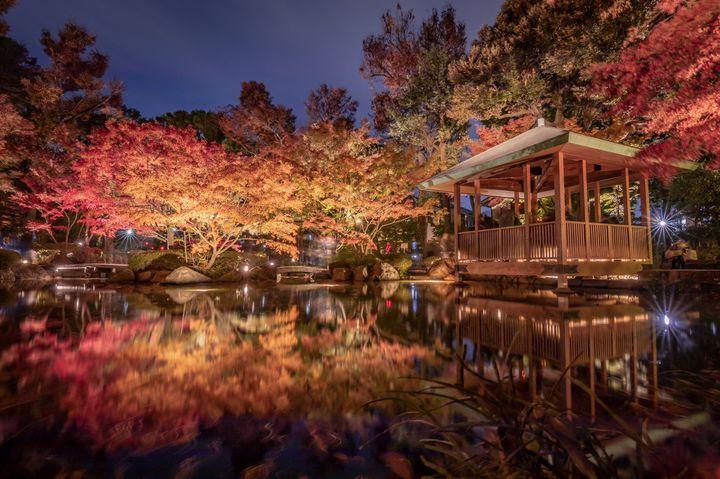 """""""君に見せたい、君と見たい""""がここに。東京都内の2019年オススメ紅葉名所まとめ"""