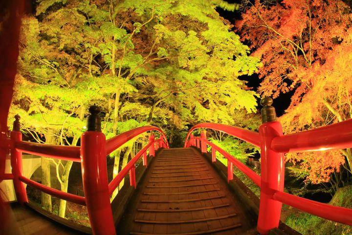 知る人ぞ知る絶景!千と千尋の神隠しのモデルになった橋「河鹿橋」が美しすぎる