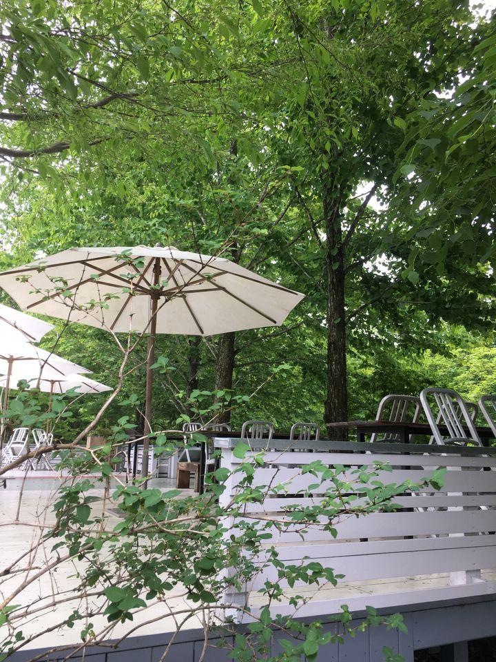 緑に囲まれたオアシス。那須「NASU SHOZO CAFE」で心に栄養を