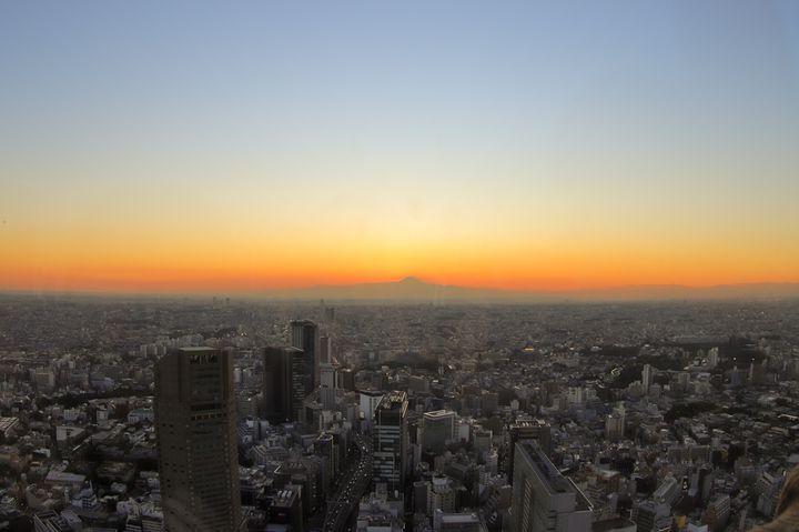 都心の絶景スポット「SHIBUYA SKY」。どの時間帯に行くのがベスト?