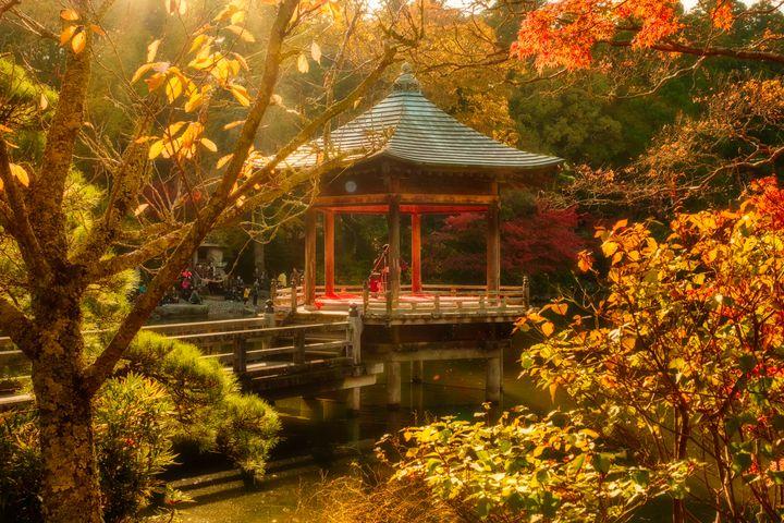 関東近郊でおすすめの紅葉デート10選!愛が深まる紅葉名所をご紹介