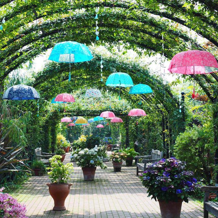 夏のデートはこれで決まり!定番を外した神奈川のおでかけスポット7選