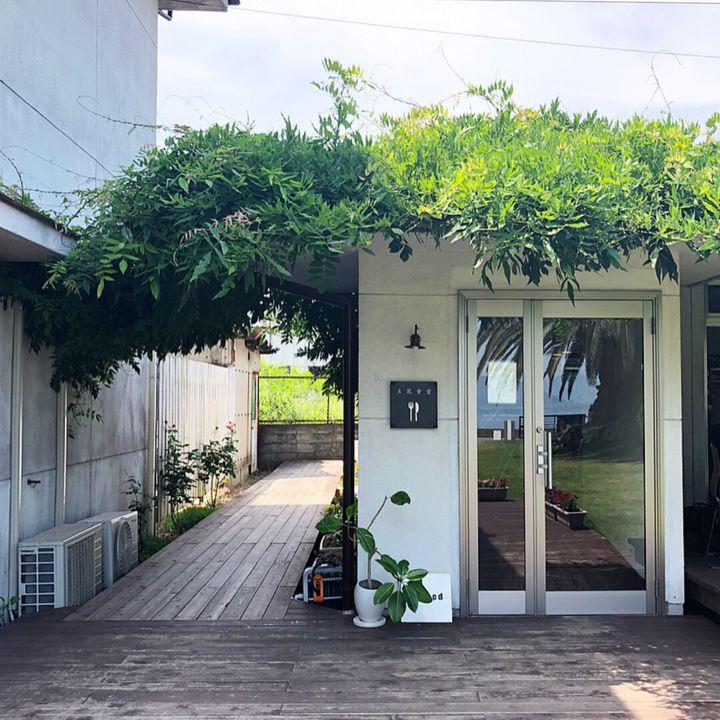 まるで南国リゾートに来たみたい。尾道・向島「立花食堂」が最高にチル