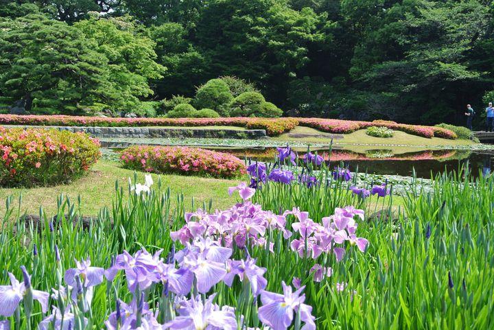 カメラ片手に散歩はいかが?東京都内の「写真&散歩」おすすめスポット8選