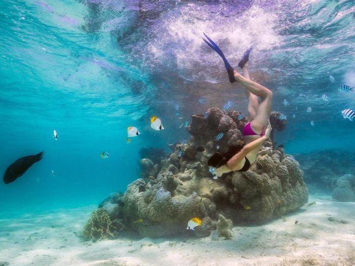 日本人がまだ知らない楽園。秘境「クック諸島」の観光スポット7選