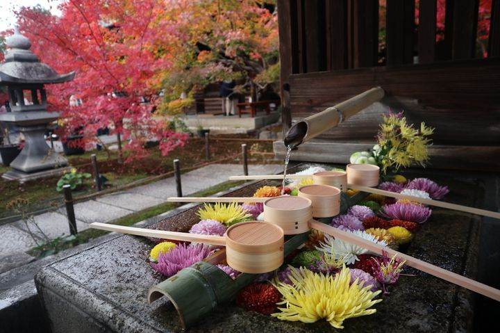 """ワンランク上の京都旅行してみない?京都でやってみたい""""和体験""""7選"""